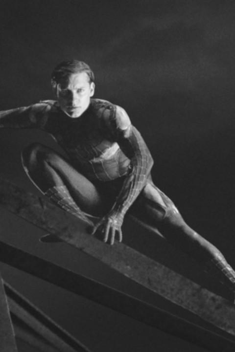 Episode 28: Spider Man 2