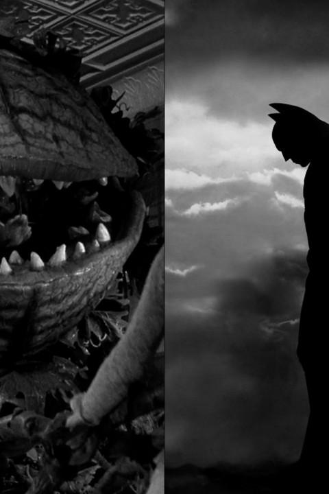 Episode 16: Batman Begins | Der kleine Horrorladen