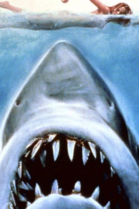 Episode 108: Der weiße Hai